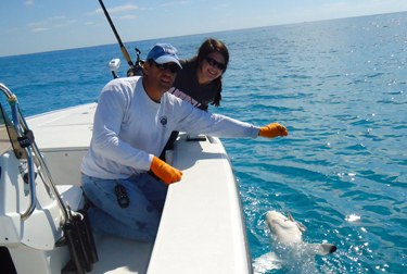 Light tackle and fly fishing on the waters of stuart port for Port st lucie fishing charters
